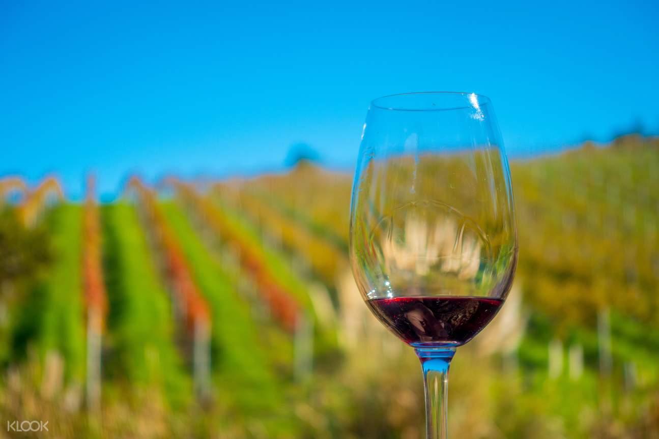 新西蘭奧克蘭激流島品酒