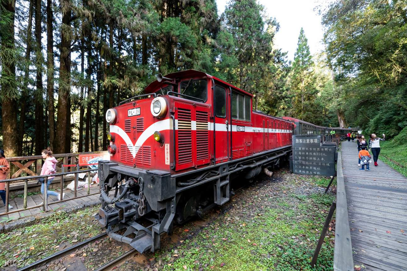alishan forest railway train