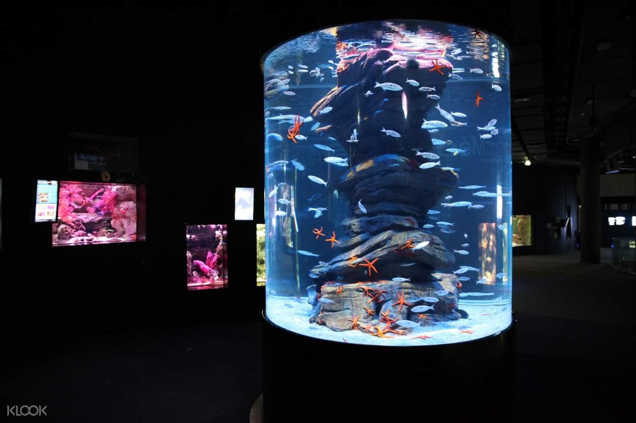 paris aquarium ticket