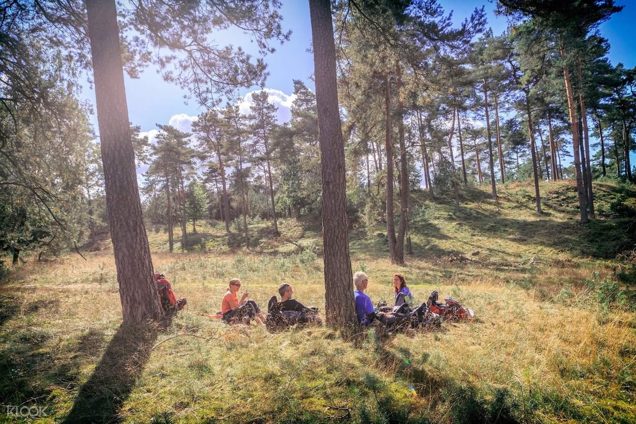 梵高国家公园,梵高作品,科勒穆勒美术馆,荷兰自然保护区,梵高国家公园一日游梵高国家公园,梵高作品,科勒穆勒美术馆,荷兰自然保护区,梵高国家公园一日游