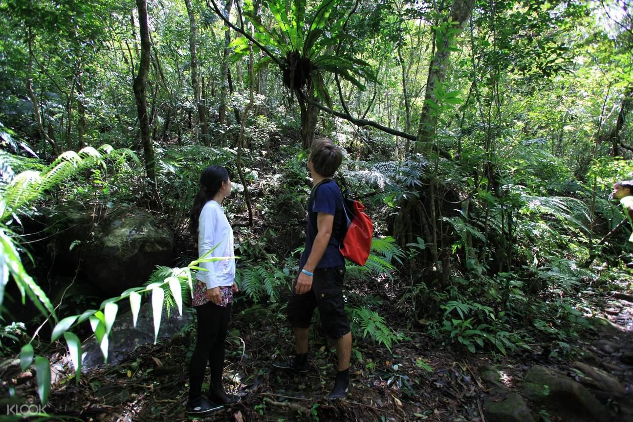 a hike to Sangara Waterfall