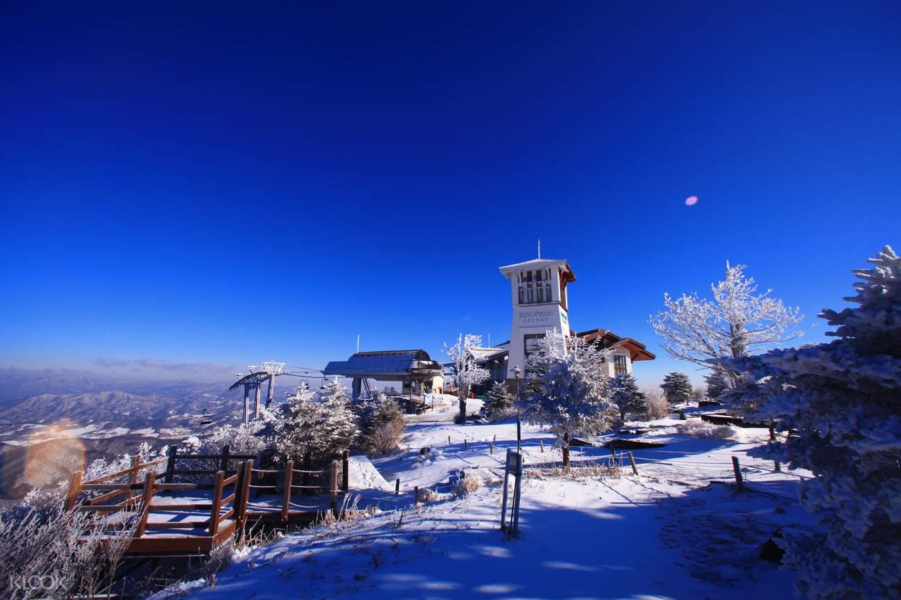 韩国 江原道 龙平滑雪度假村