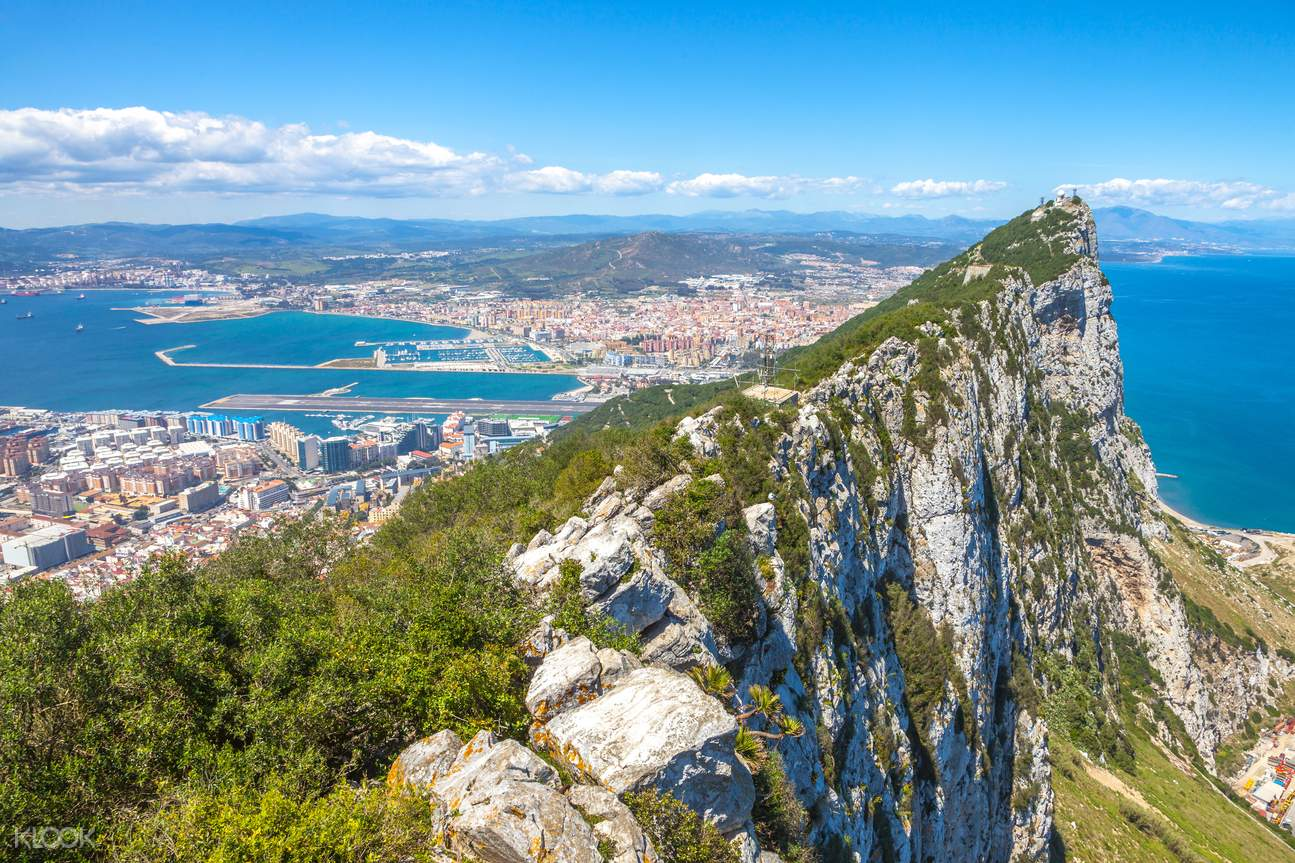 Guided Dolphin Watching & Shopping Tour in Gibraltar