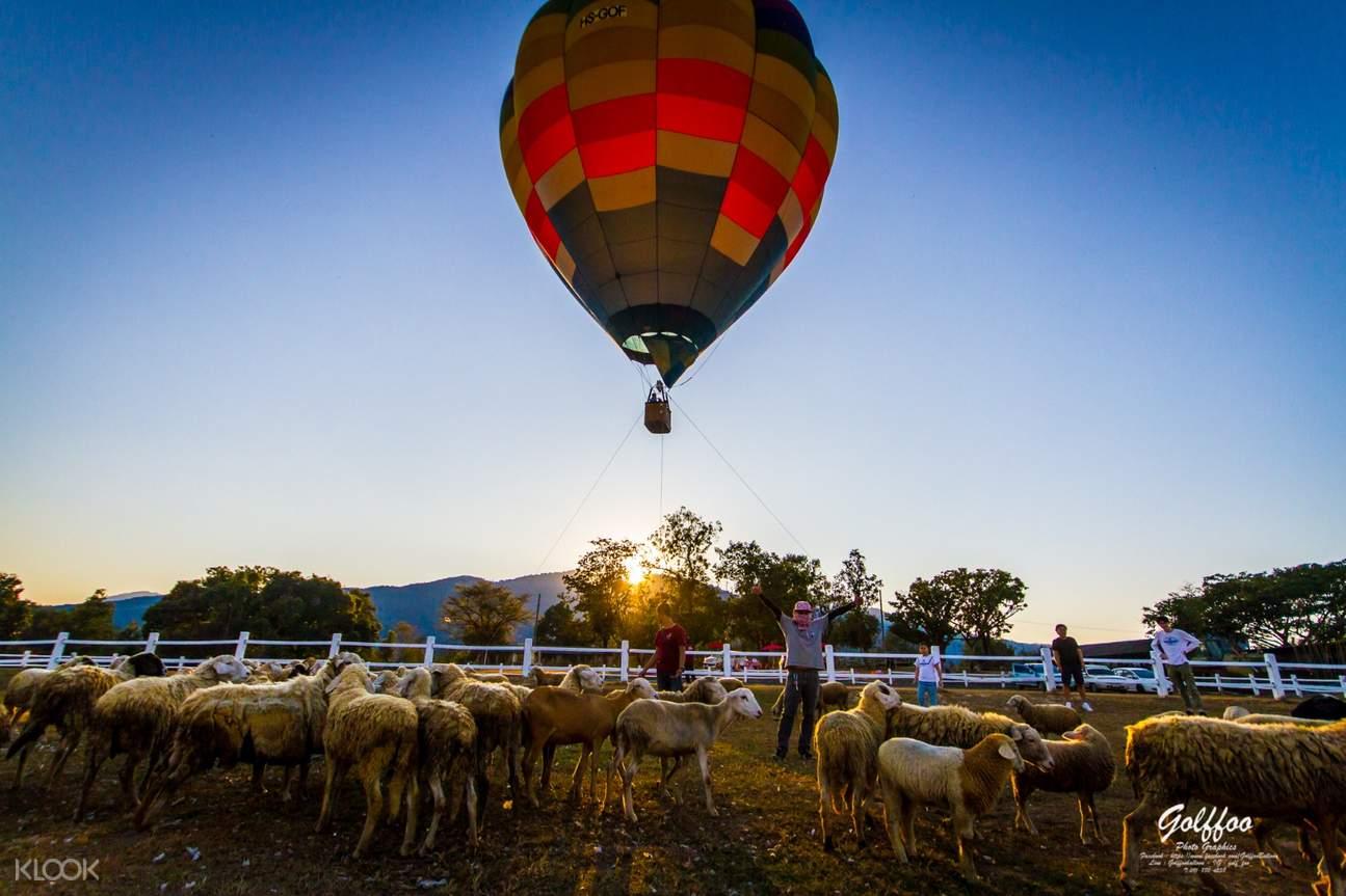 清邁繫留式熱氣球飛行體驗