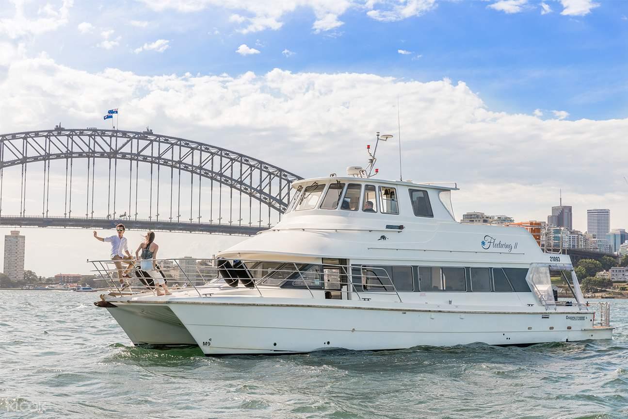 vivid catamaran cruise