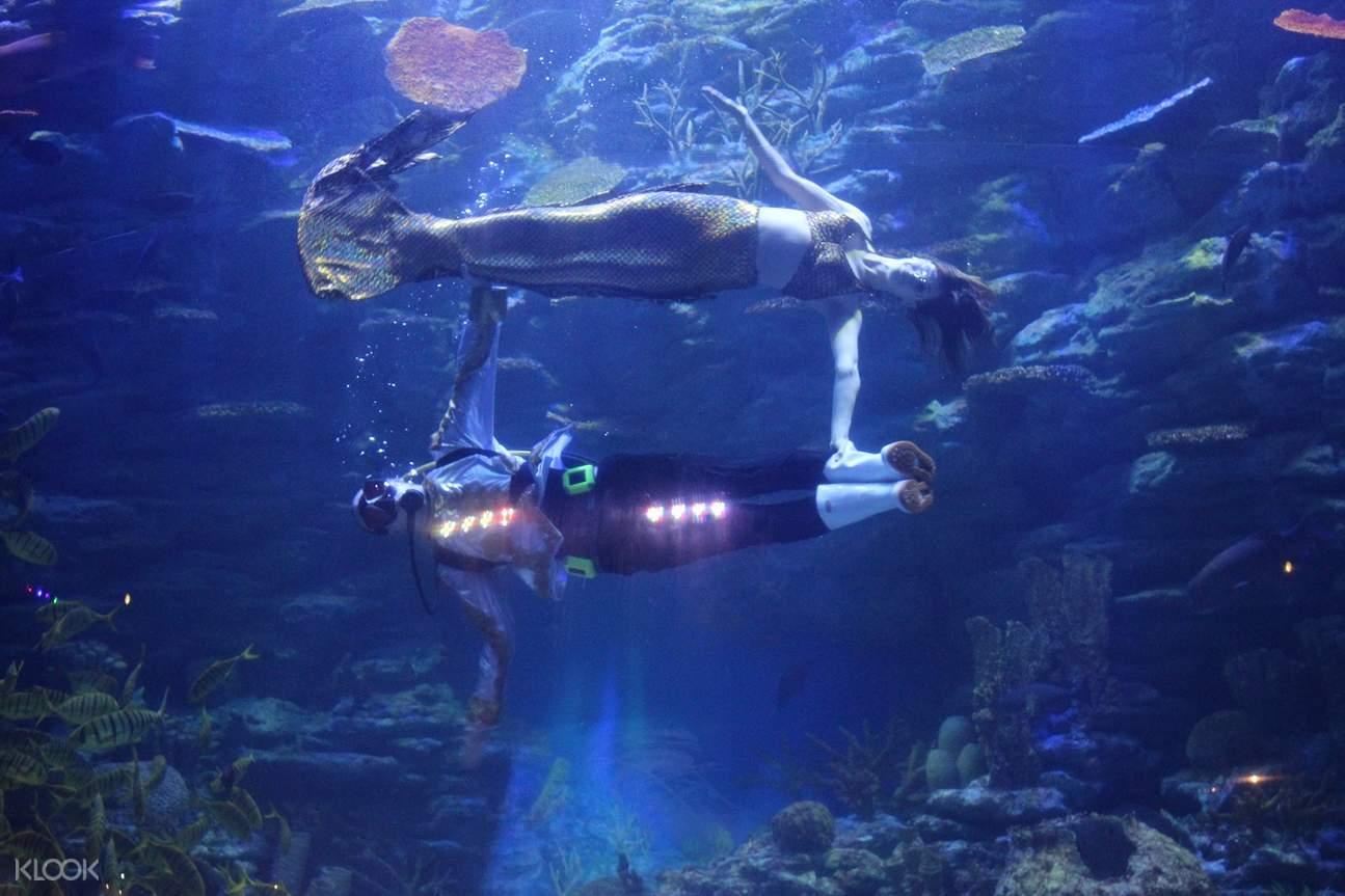 sea life glass tunnel