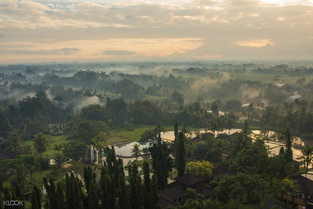 aerial view of ubud