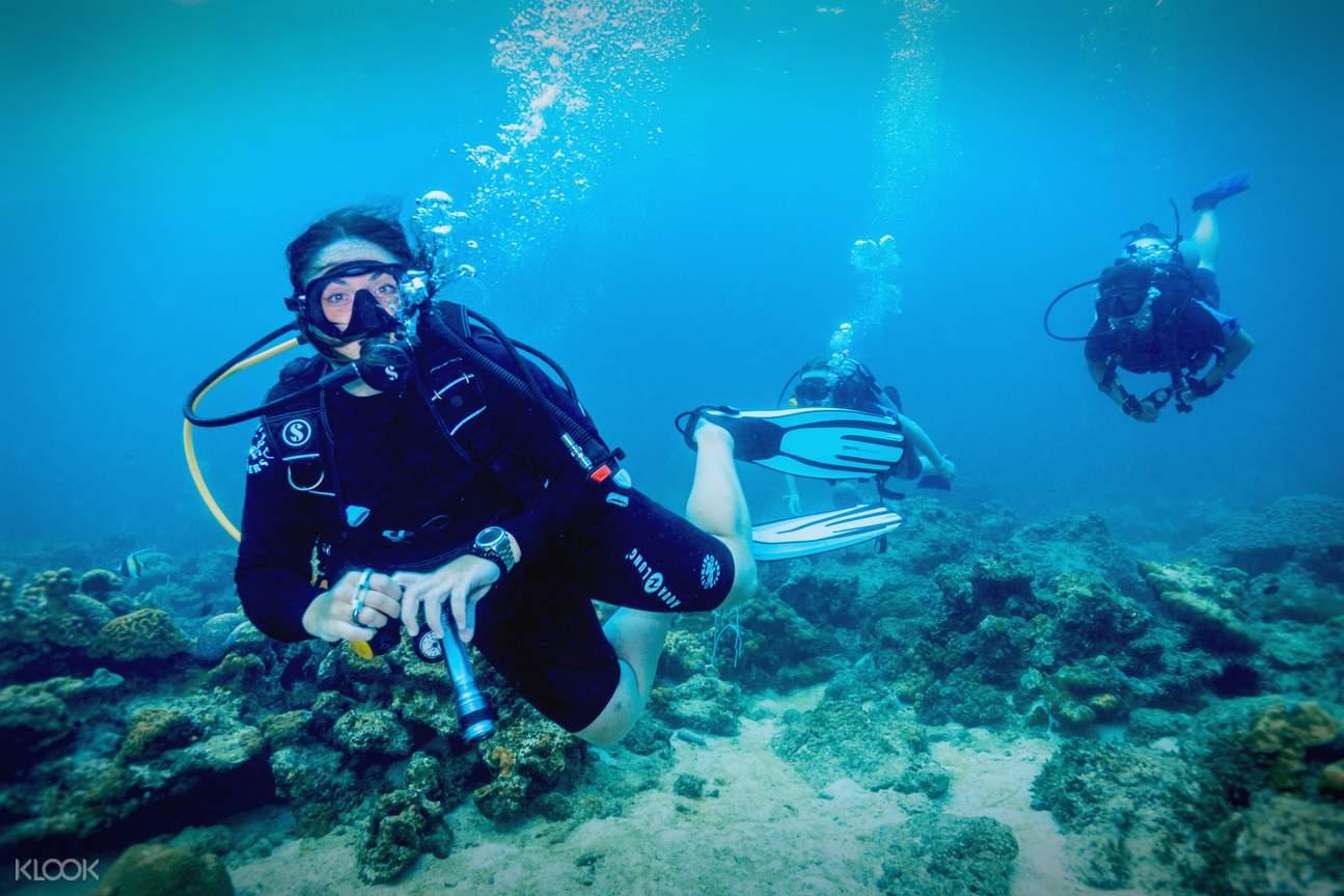 麗貝島深潛體驗