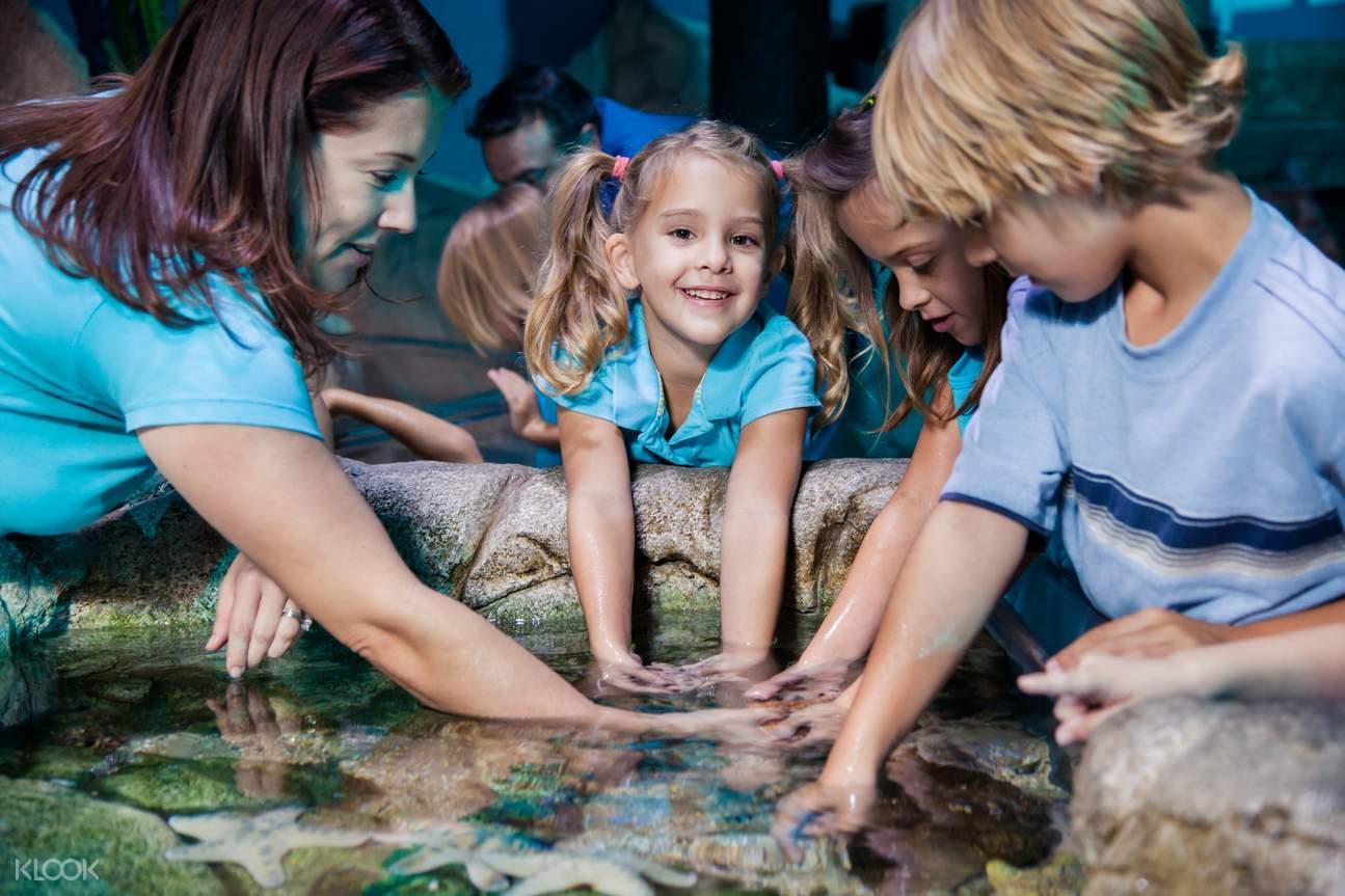 sea life aquarium london