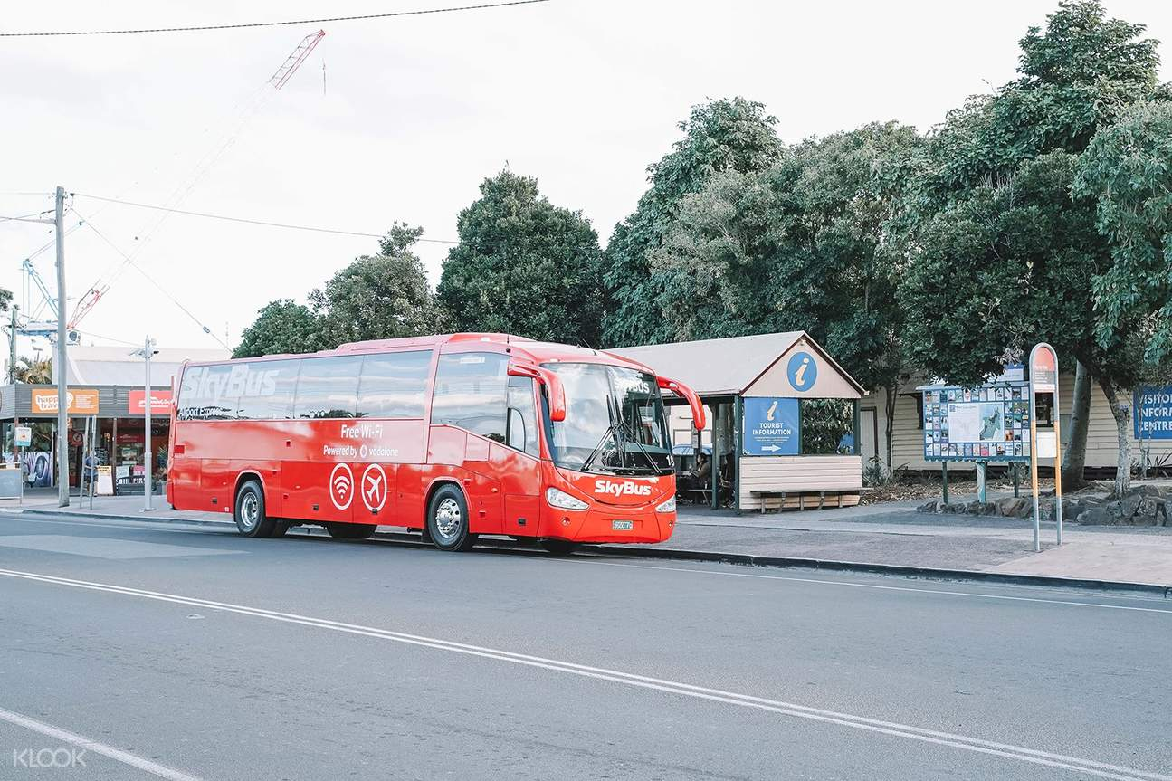 red skybus for byron bay transfers