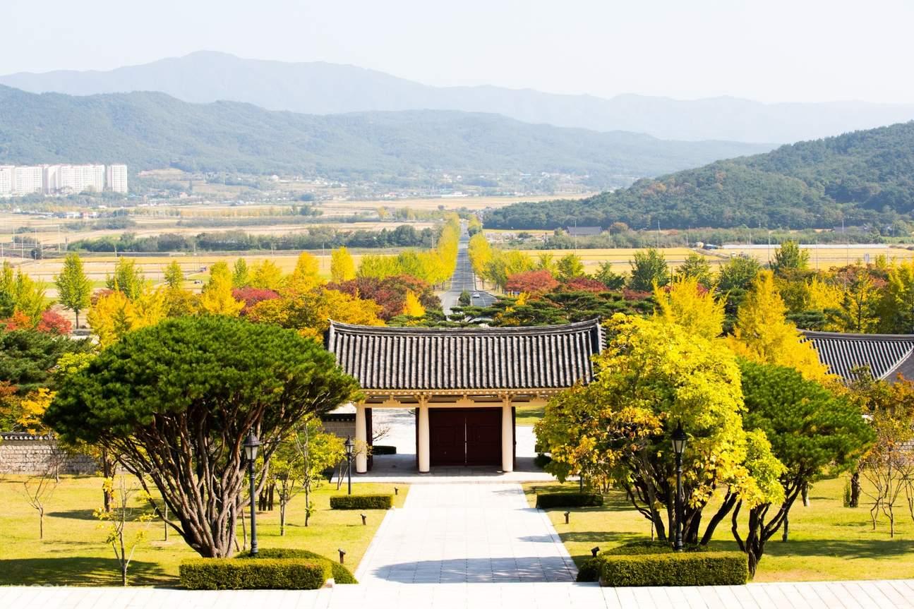 韩国釜山赏枫之旅