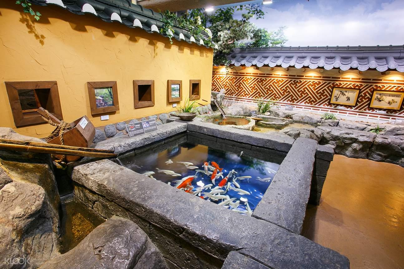 首尔COEX水族馆一日门票