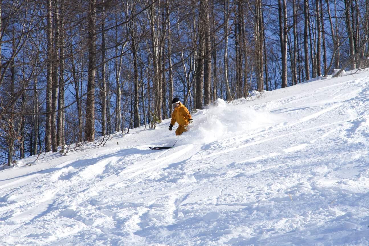 东京 白马山麓滑雪度假村缆车票