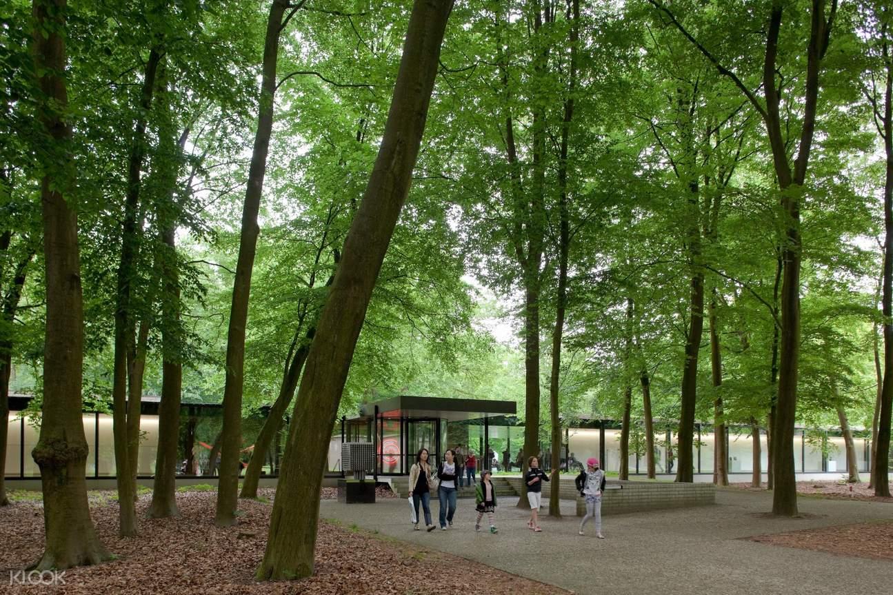 梵高国家公园,梵高作品,科勒穆勒美术馆,荷兰自然保护区,梵高国家公园一日游