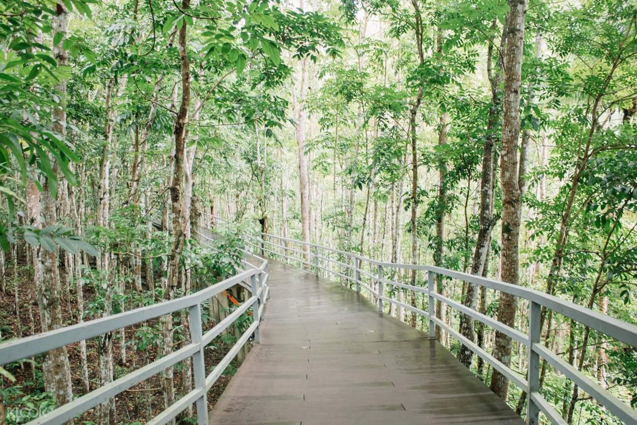 pathwalk in cebu safari park
