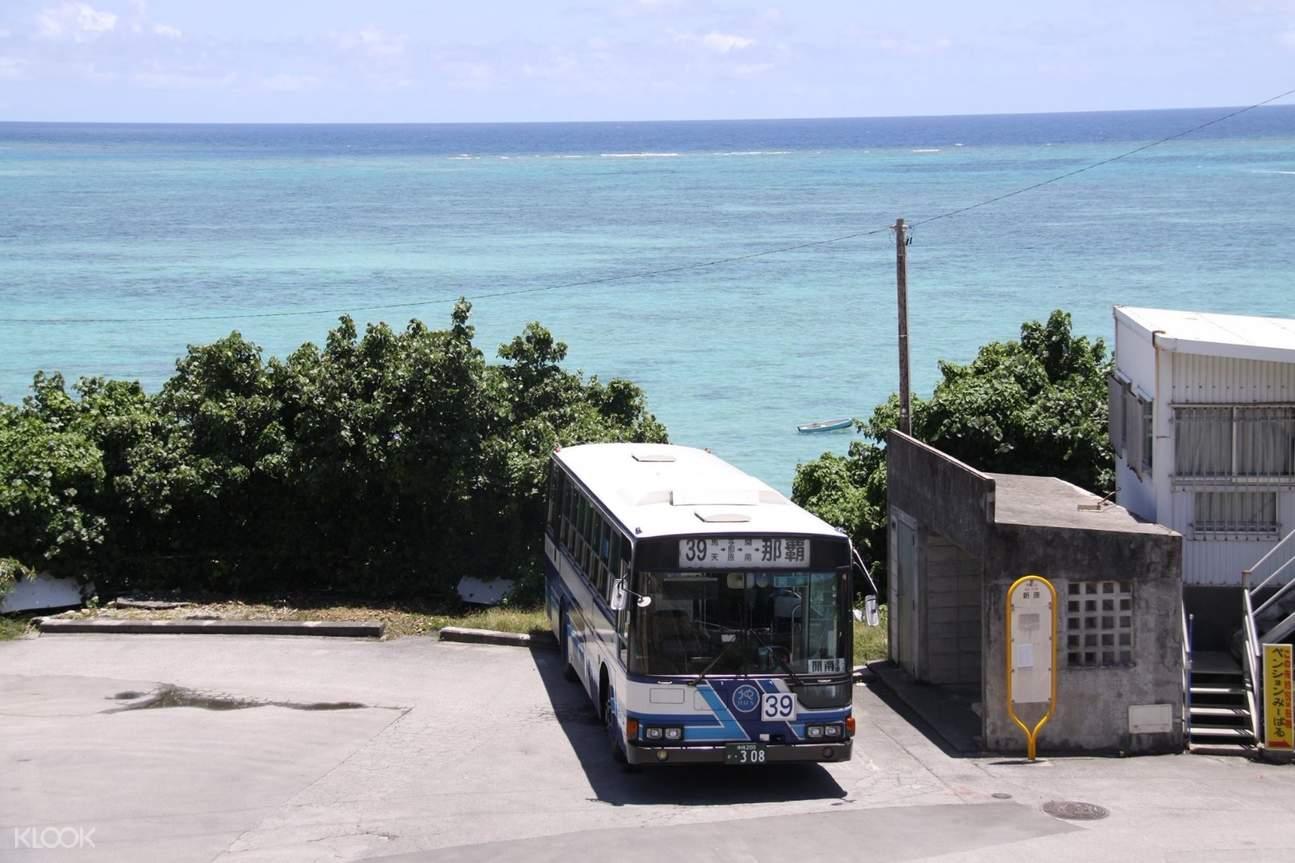 Okinawa bus pass