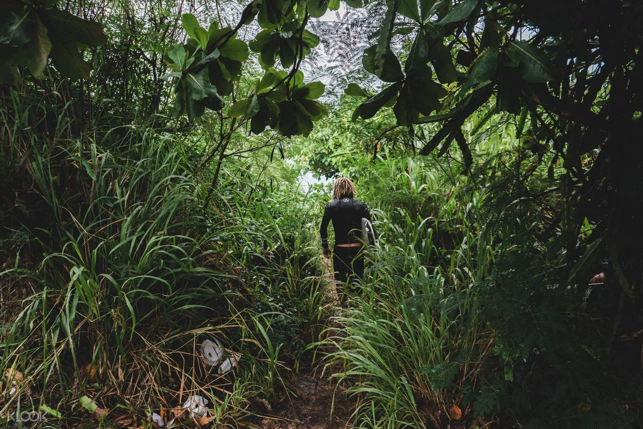 越南富国岛自然探索之旅