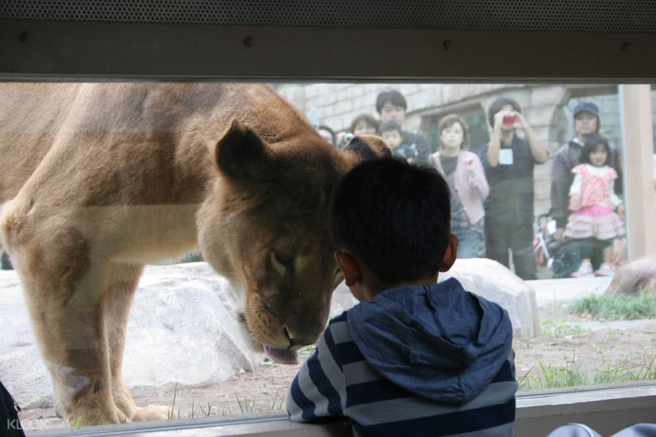 東武動物公園門票