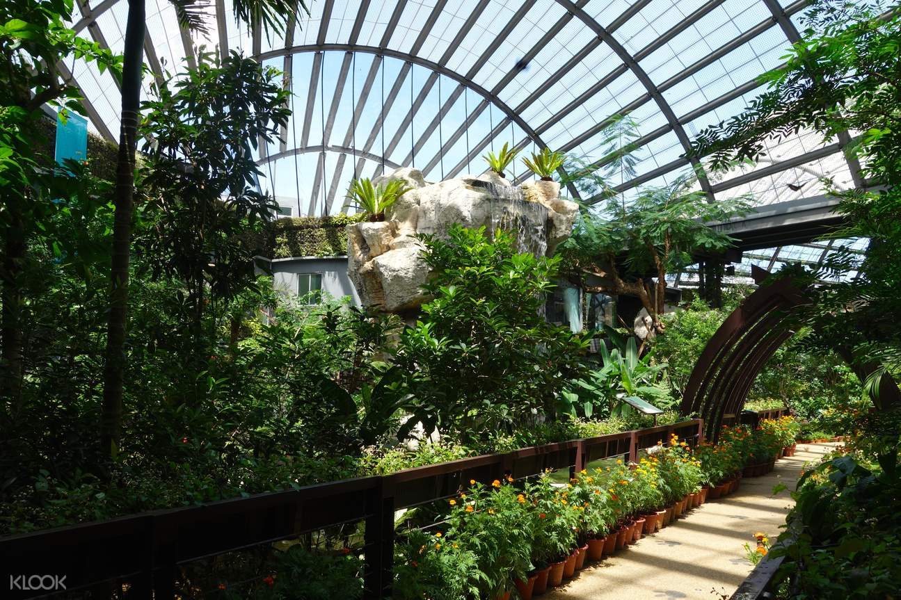 entopia butterfly farm  admission