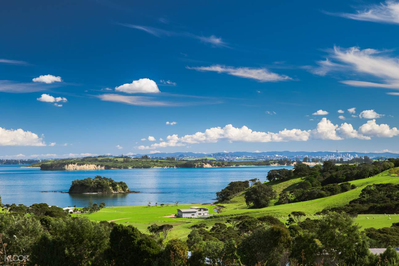 Auckland Highlights with Waiheke Island Wine Tasting