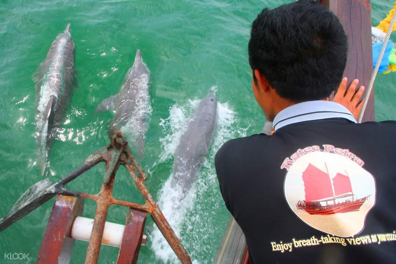 ratee petra cruise thailand, tour monkey island thailand