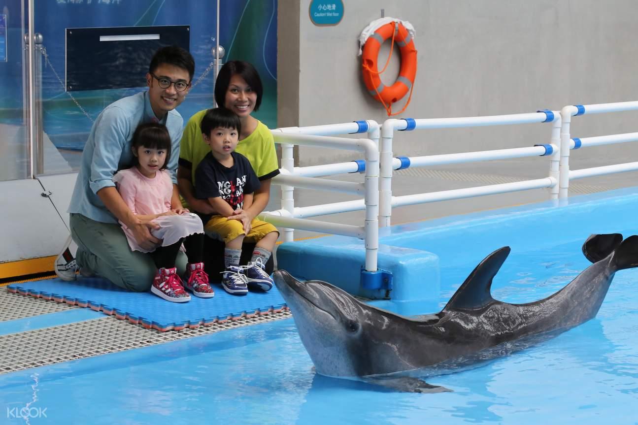 香港海洋公园海豚亲密接触体验