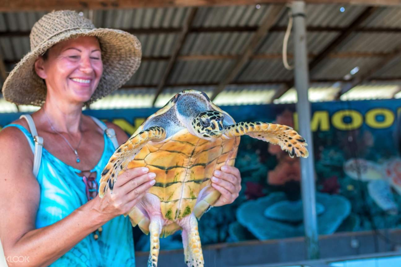 woman holding turtle