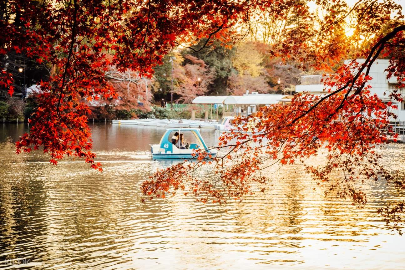 Tokyo Ghibli Museum and Inokashira Park Walking Tour in