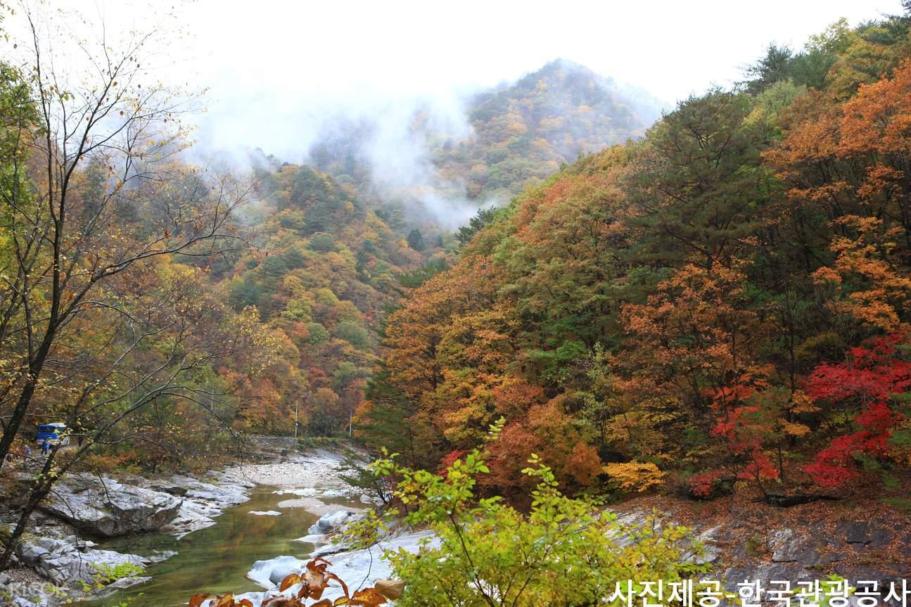 雪岳山国家公园赏枫