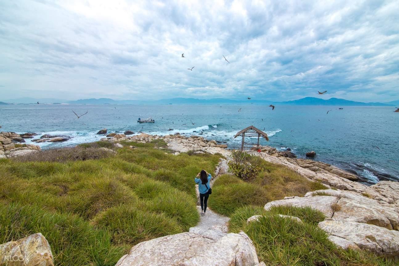 Swift Bird Island