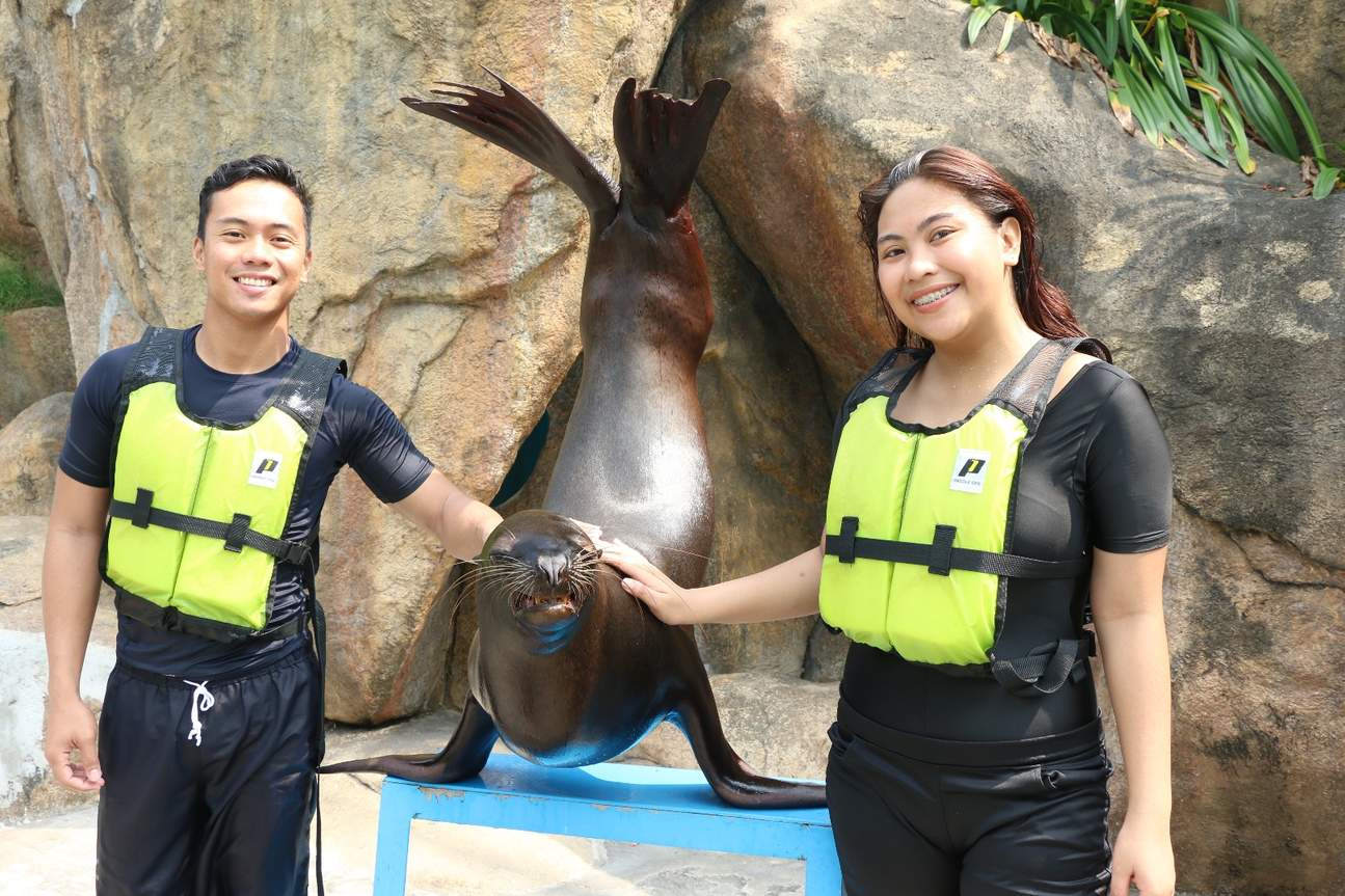 马尼拉海洋公园互动体验 海狮训练员