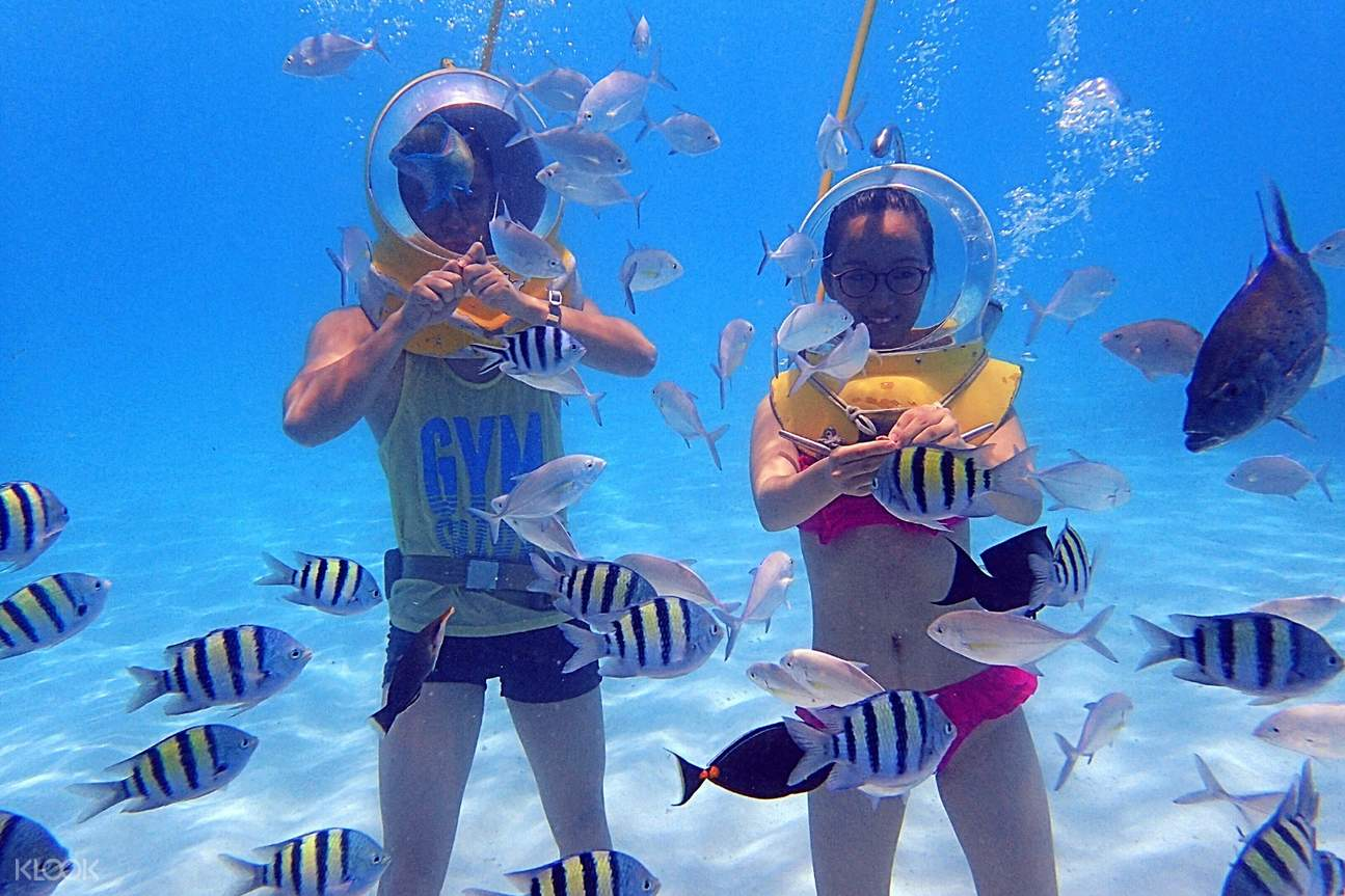 Image result for Managaha Island Experience Diving