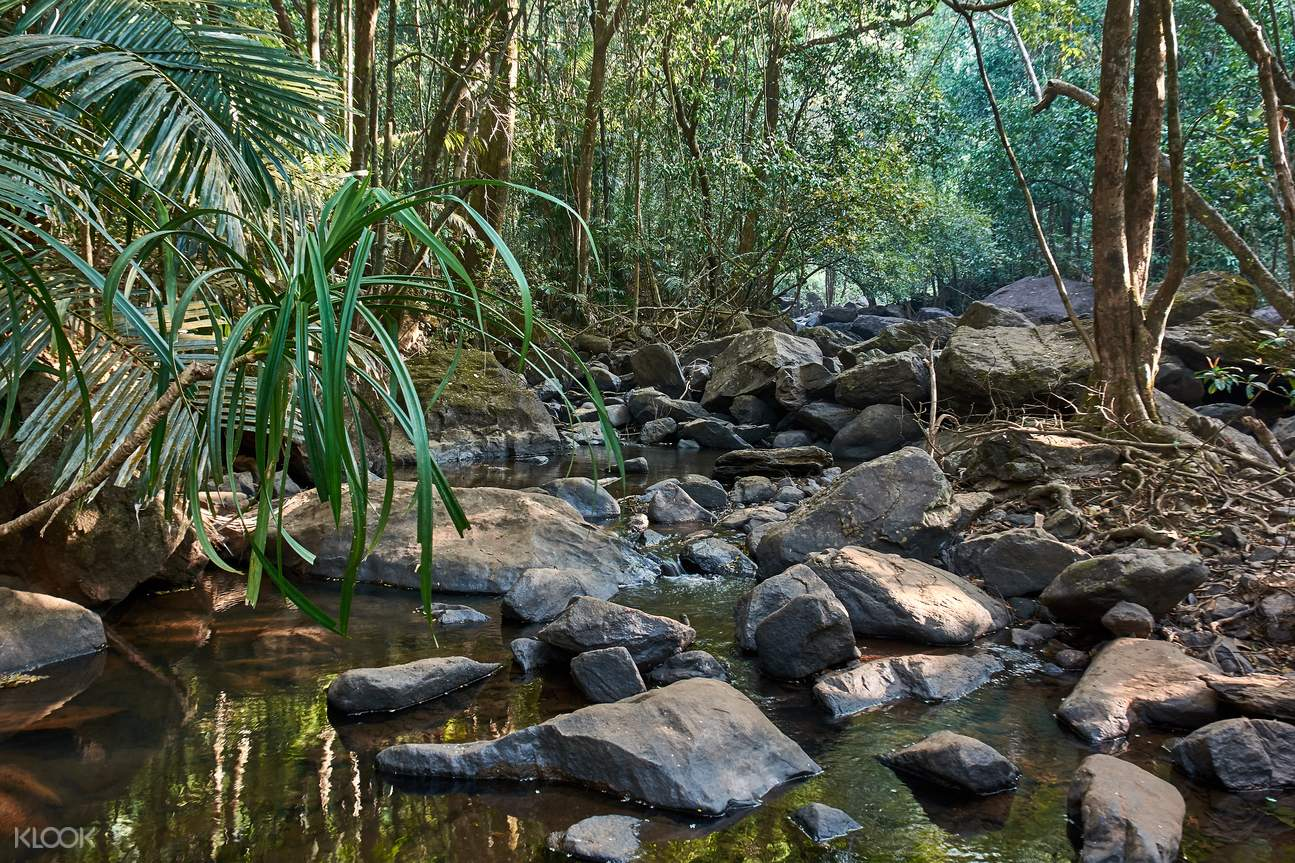 Dudhsagar瀑布,果阿瀑布,果阿植物园,果阿香料园,果阿一日游,果阿户外
