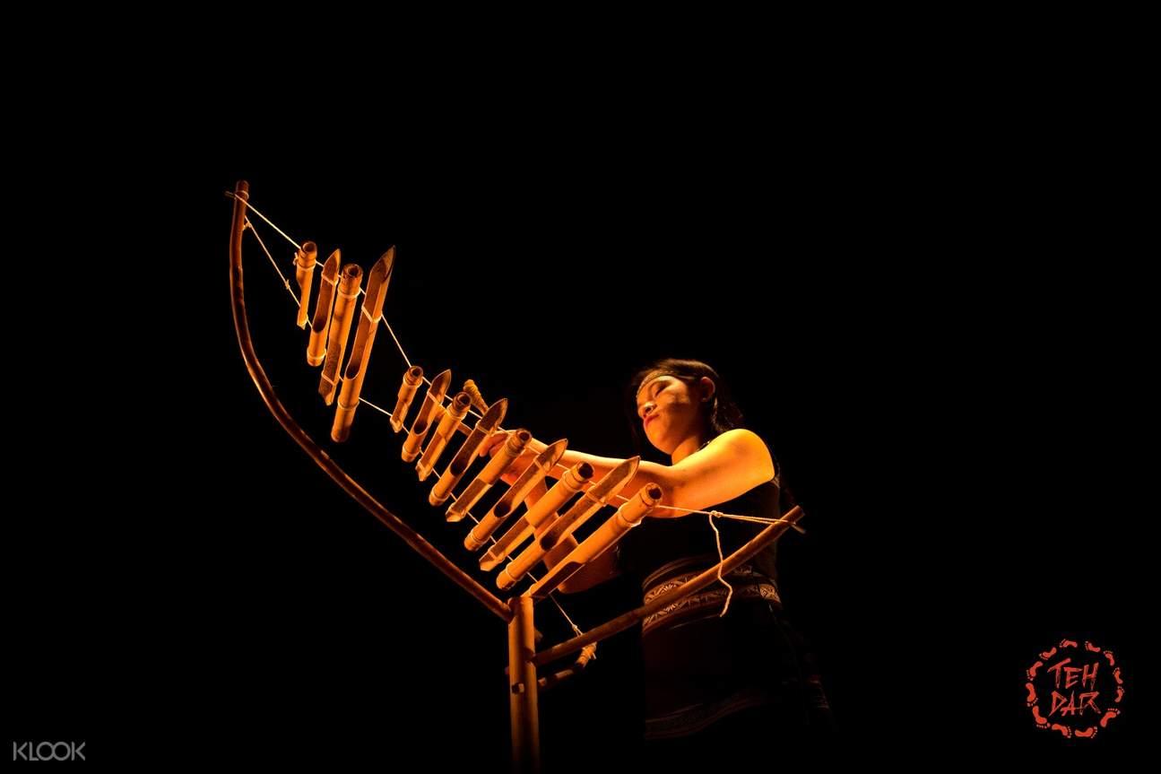 越南會安市Teh Dar Show門票越南傳統樂器