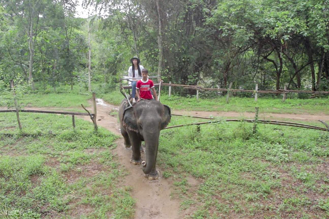 elephant riding 2d1n kanchanaburi private tour