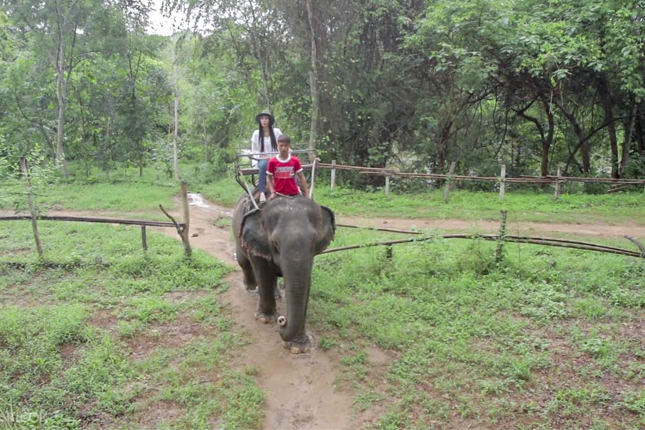 elephant riding 2d kanchanaburi private tour