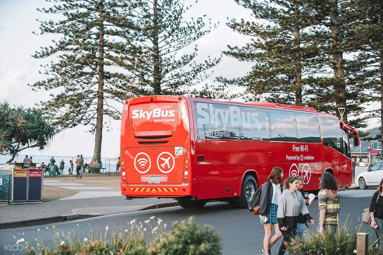 skybus and trees