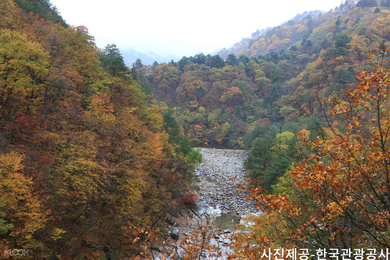 seoraksan national park day tour