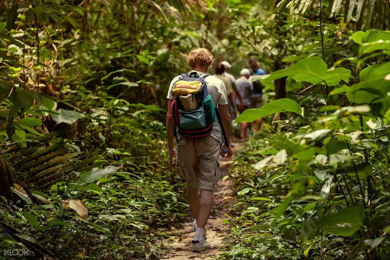 丽贝岛丛林徒步 & 浮潜之旅