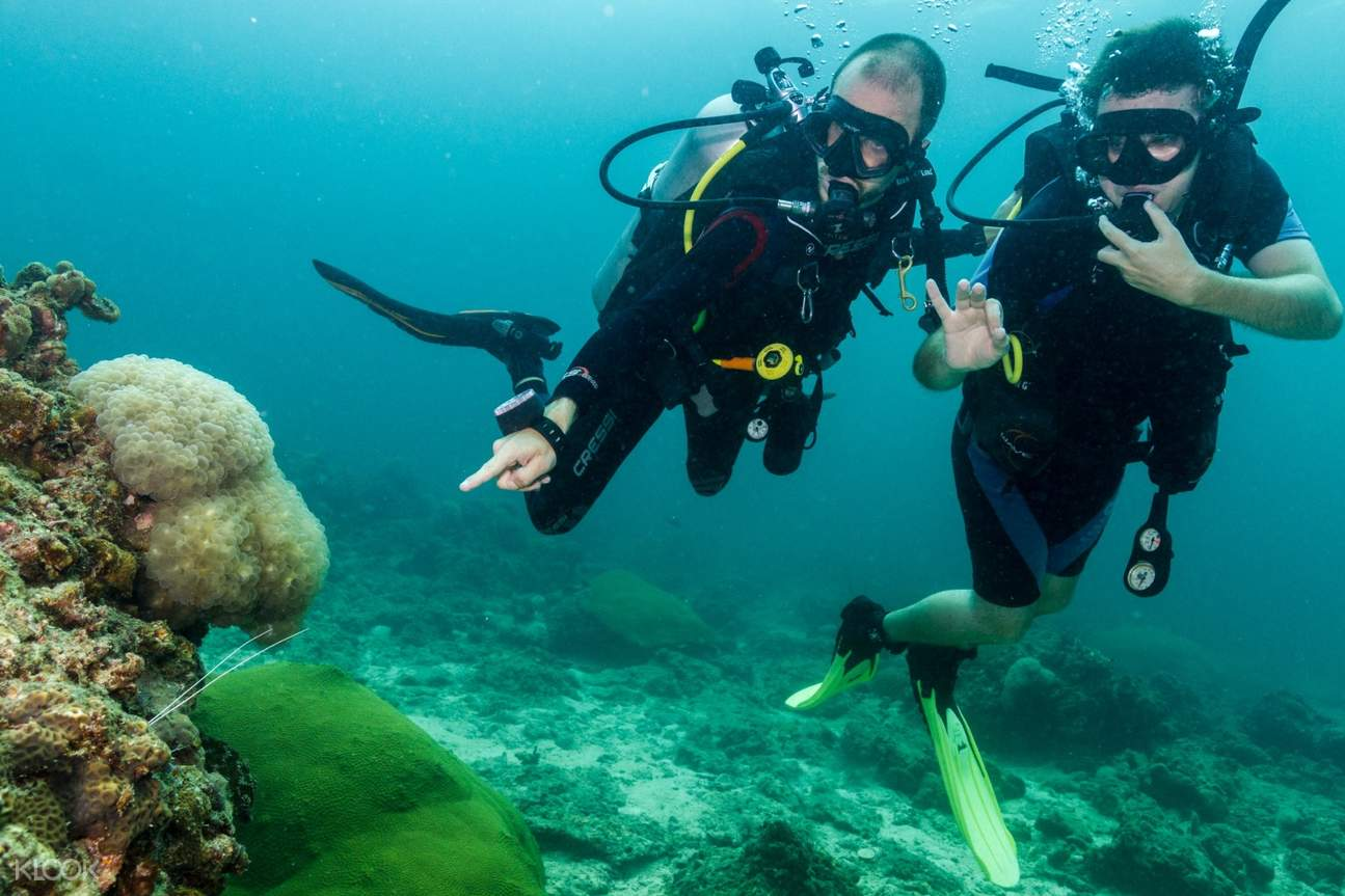 scuba diving course Koh phi phi