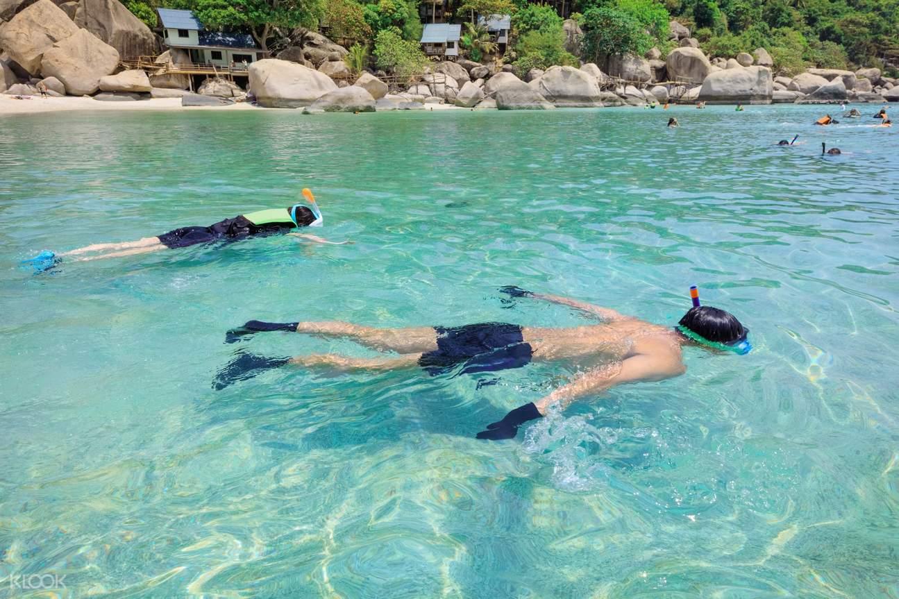 Goa snorkel