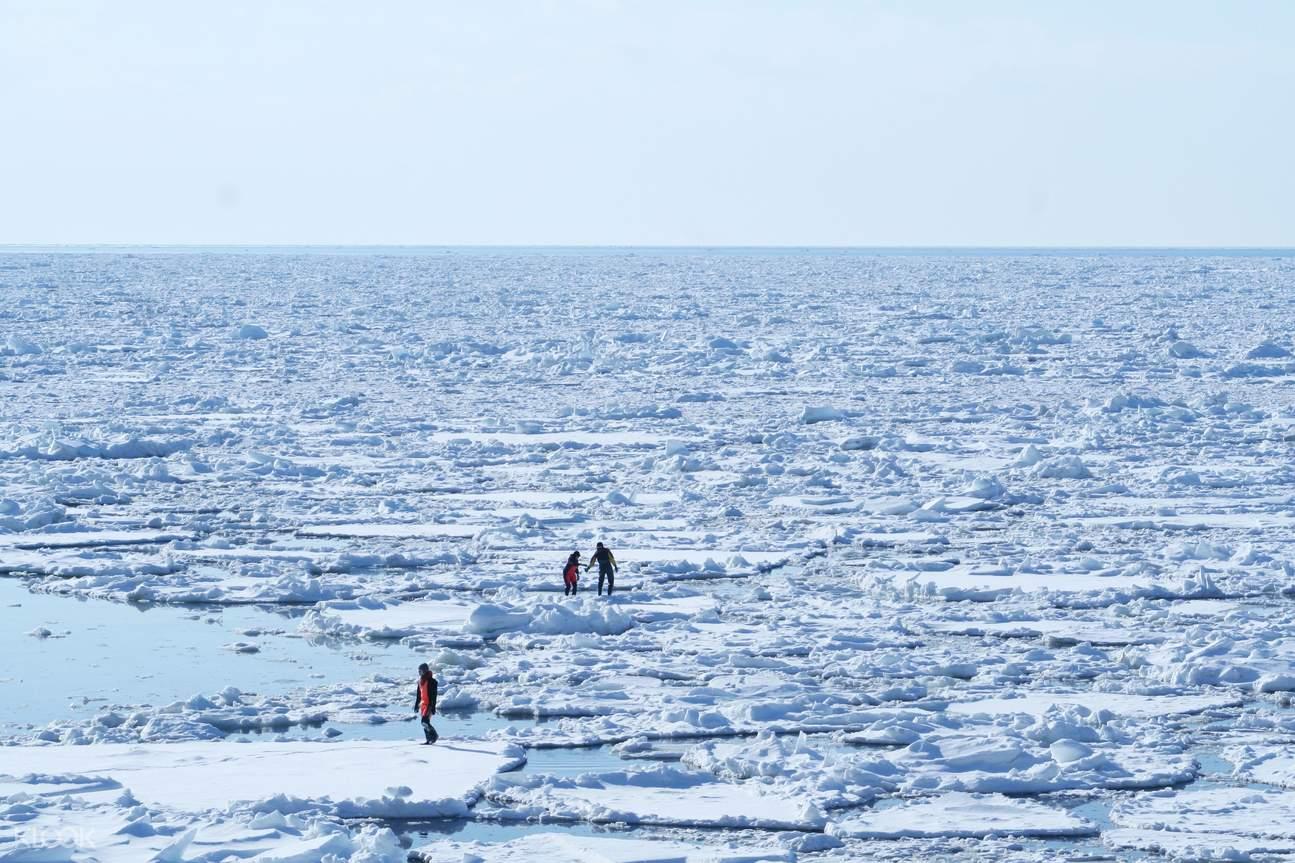 知床冬季漫步流冰之旅