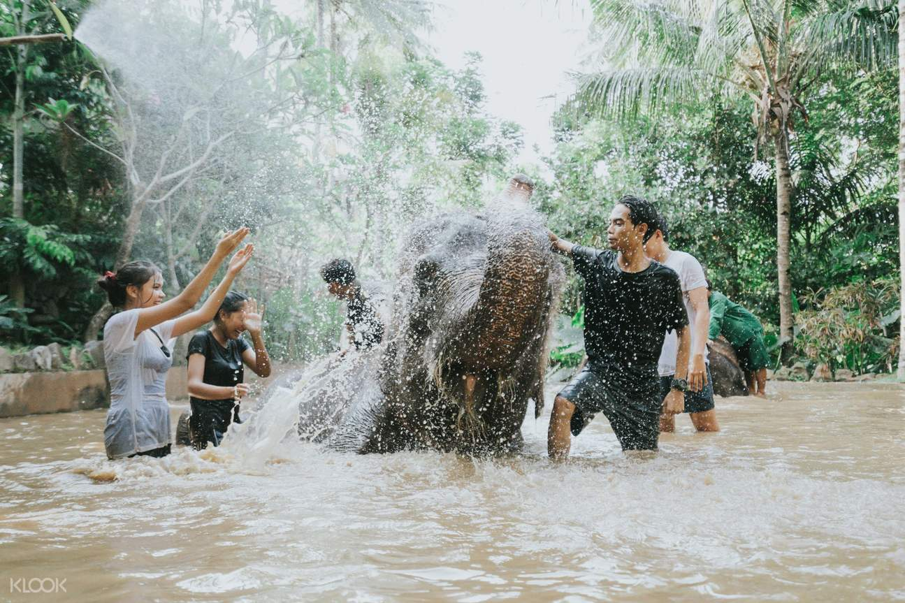 Lombok Elephant Park (Domestic Rate)