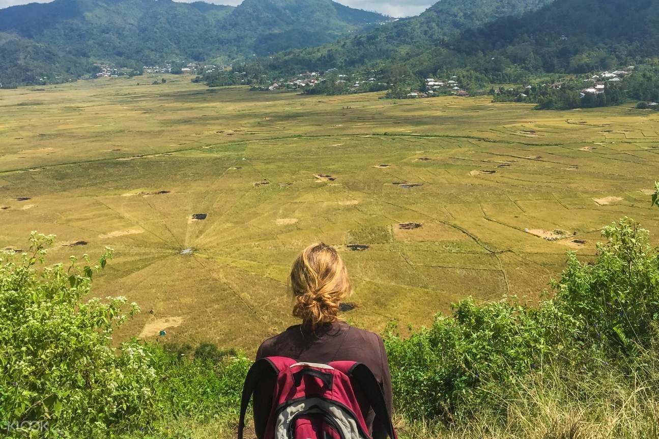 girl in spider web rice fields