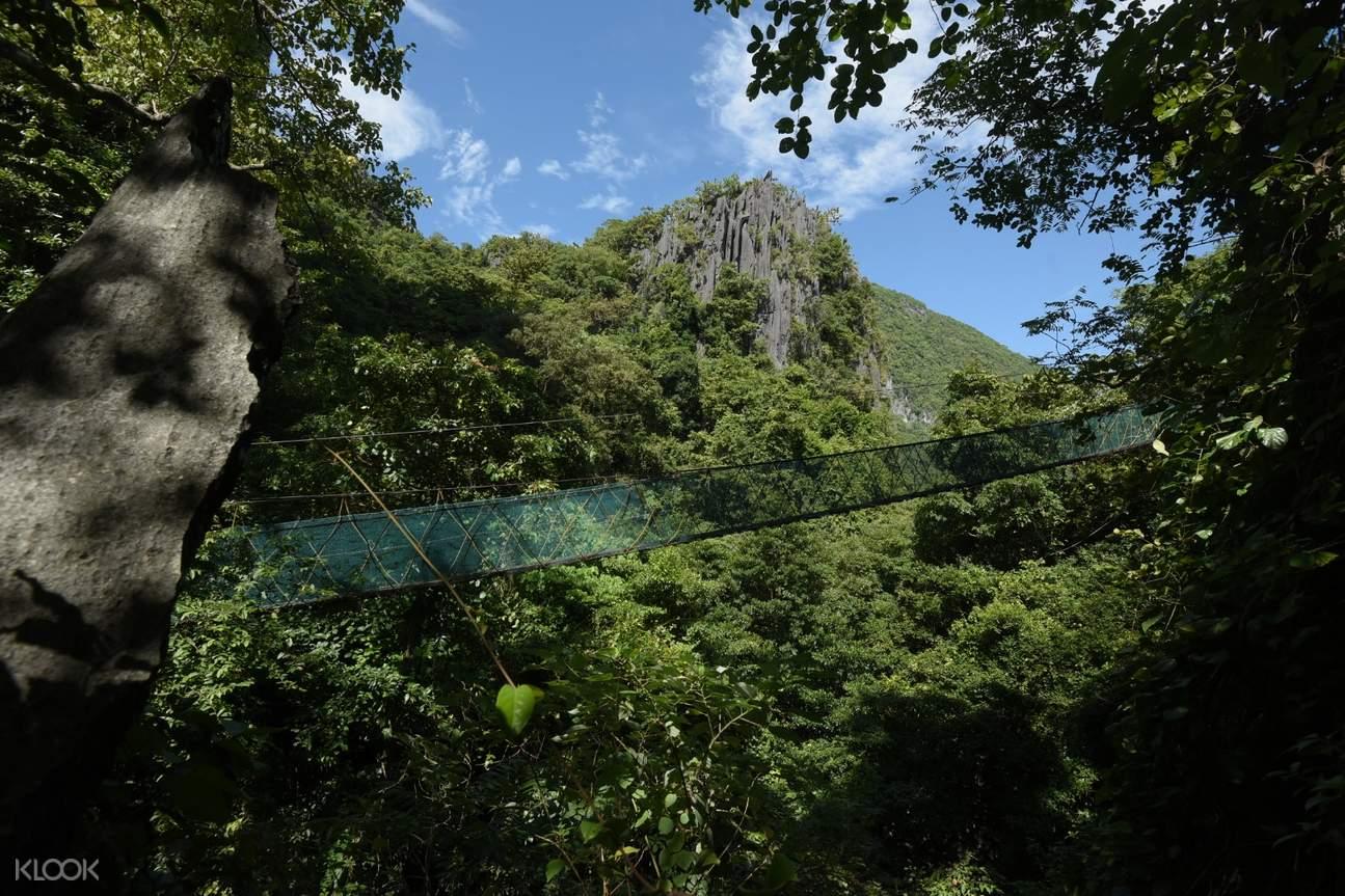 hanging bridge taraw cliff