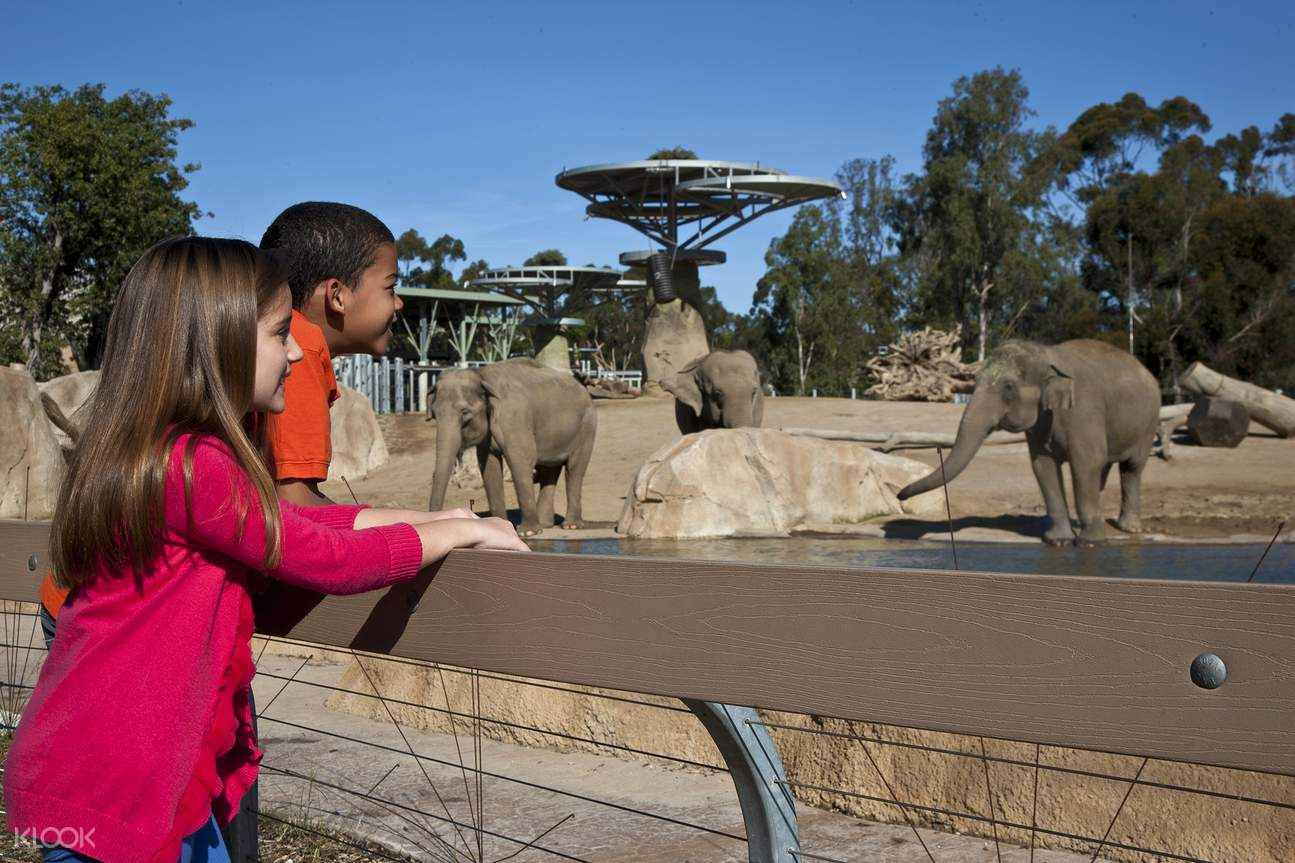 San Diego Zoo admission