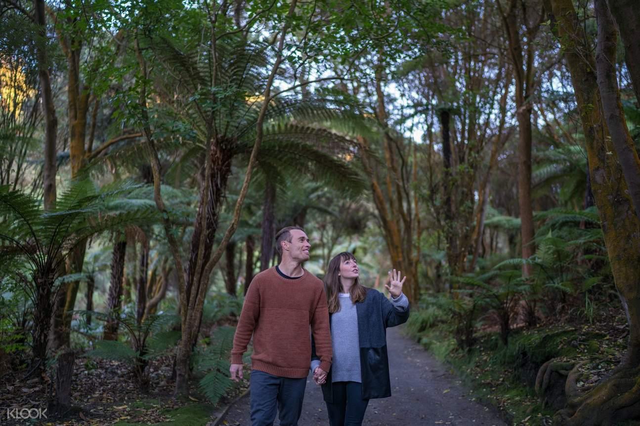 Things to do at Rotorua