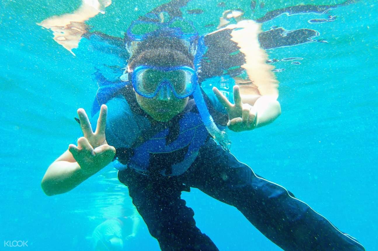 象鼻岩浮潛