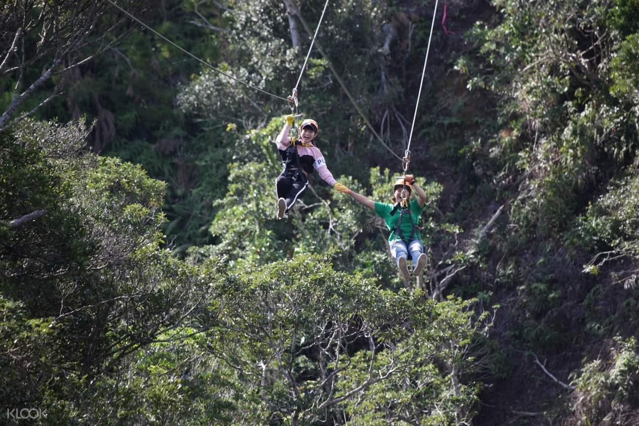 Fly Zipline Experience at Matayoshi Coffee Farm