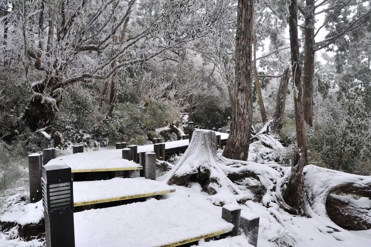 snow at Taipingshan National Forest Recreation Area